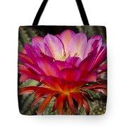 Dark Pink Cactus Flower Tote Bag