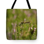 Darter 1 Tote Bag
