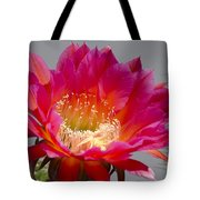Deep Pink Cactus Flower Tote Bag