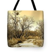Desert Trail Tote Bag