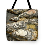 Detail Of Eroded Rocks Swirled Tote Bag