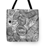 Dividing Mitochondrion Tote Bag by Omikron