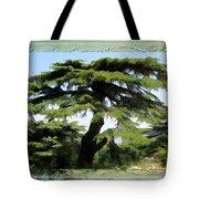 Do-00512 Cedar Forest Tote Bag