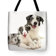 Dog And Puppy Tote Bag
