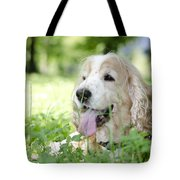 Dog On The Green Grass Tote Bag