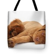 Dogue De Bordeaux And Cavalier King Tote Bag