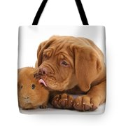 Dogue De Bordeaux Puppy With Red Guinea Tote Bag