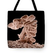 E. Coli Bacteria Tote Bag by Science Source