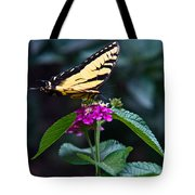 Eastern Tiger Swallowtail 3 Tote Bag