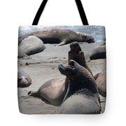 Elephant Seal Colony On Big Sur  Tote Bag
