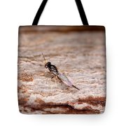 Emerald Ash Borer Parasite Tote Bag by Science Source