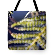 Enchanted Ferns Tote Bag