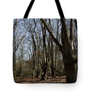 Epping Forest Tote Bag
