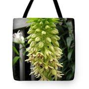 Eucomis Named Bicolor Tote Bag