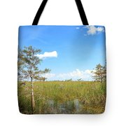 Everglades Landscape Tote Bag