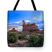 Eye View Of Arches Tote Bag