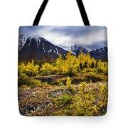 Fall Colours And Auriol Range, Kluane Tote Bag