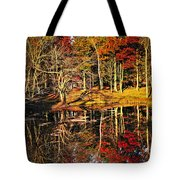 Fall Forest Reflections Tote Bag