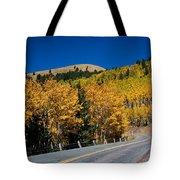 fall in Ruidoso Tote Bag