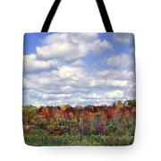 Fall In Wisconsin Tote Bag