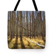 Fall On The Mountain  Tote Bag