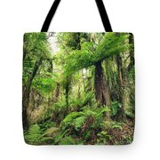 Fern Tree Tote Bag
