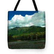 Fernie British Columbia  Tote Bag