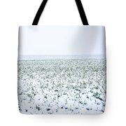 Field In Winter Tote Bag