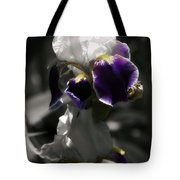 Filoli Iris Tote Bag