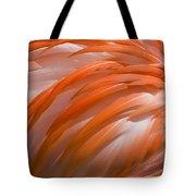 Flamingo Feathers Tote Bag