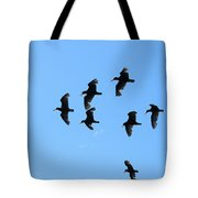 Flock Of Flying Oystercatchers Tote Bag