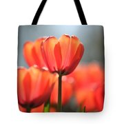 Floral 34 Tote Bag
