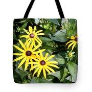 Flower Rudbeckia Fulgida In Full Tote Bag by Ted Kinsman