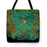 Fluorescent Sea Anemone Tote Bag