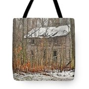 Forgotten Dreams Tote Bag by Pamela Baker