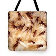 Formosan Termites Tote Bag