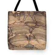 Fossil Stromatolite Tote Bag