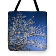Fresh Snowfall Blankets Tree Branches Tote Bag