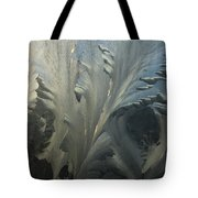 Frost Crystal Patterns On Glass, Ross Tote Bag