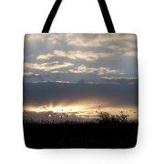 Gettysburg Dawn Tote Bag