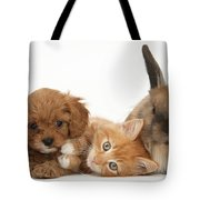 Ginger Kitten With Cavapoo Pup Tote Bag