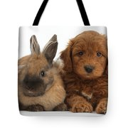 Goldendoodle Puppy And Rabbit Tote Bag
