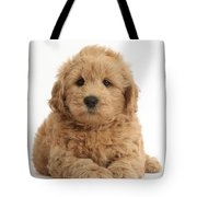 Goldendoodle Puppy Tote Bag