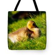 Gosling In Spring Tote Bag