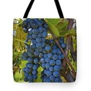 Grapes On A Vine Sutton Junction Quebec Tote Bag
