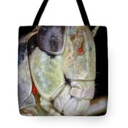 Grasshopper With Parasitic Mite Tote Bag