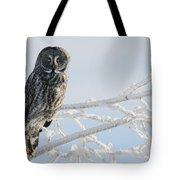 Great Grey Owl, Northern British Tote Bag
