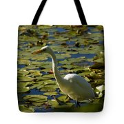 Great White Egret Perched On A Rock Tote Bag