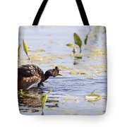 Grebe With Babies Tote Bag