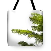 Green Branches Of A Christmas Tree Tote Bag